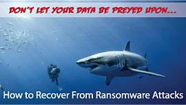 Don't let your data be Preyed upon...