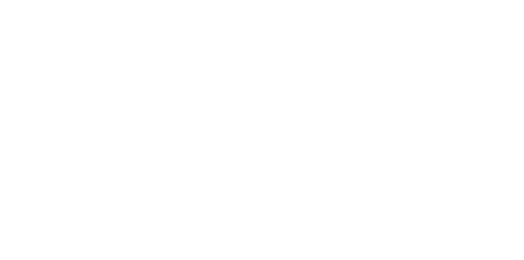 Net3 Logo 2018_white